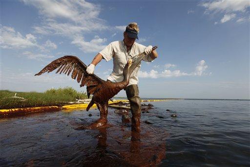 BP avait les informations nécessaires pour éviter la marée noire