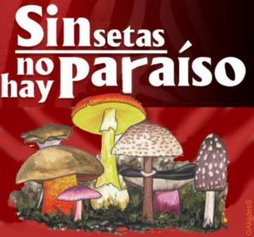 [Sin+setas+no+hay+paraíso++GAlcidesS.JPG]