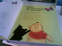 A picture of the offending pig