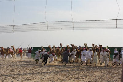 Camel trainers scamper out of the way