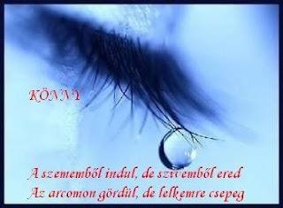 http://1.bp.blogspot.com/_5bg7tqHEAhE/TDnwaFsutgI/AAAAAAAABX4/mCIKurUQjKE/s320/id%C3%A9zetek+31.jpg