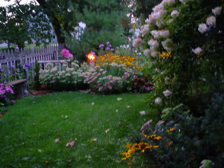 Front yard garden in late summer