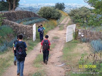 Los últimos kilómetros a Amatitán