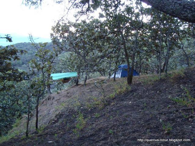 Durmiendo al aire libre en el Cero Grande de Ameca