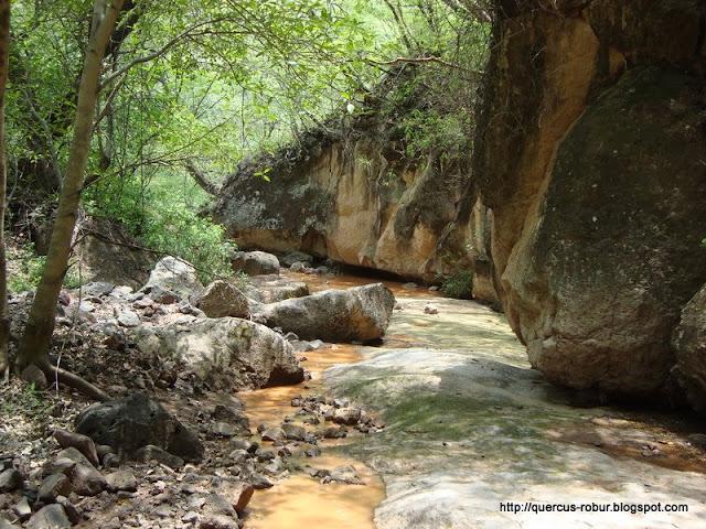 La última parte del cañón el Aguacate
