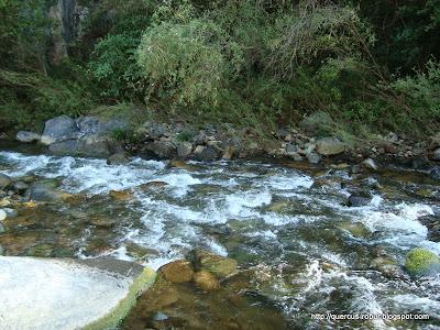 Río de agua cristalina en el municipio de Chiquilistlán