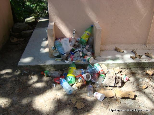 Lo que han dejado los visitantes en Torre 2 del Bosque la Primavera