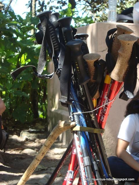 Bastones para hiking y una burrita