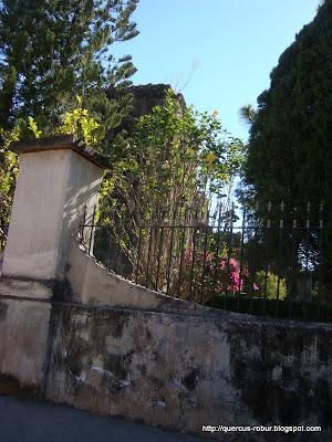 Templo de la Preciosa Sangre de Cristo, vista desde afuera, vista 3