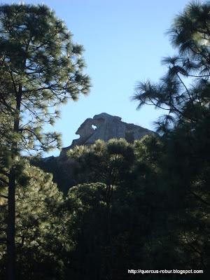 Cerro de la Campana visto desde su base