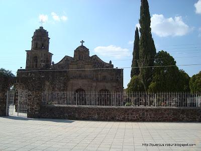 Calles adoquinadas afuera del Templo de la Santa Cruz