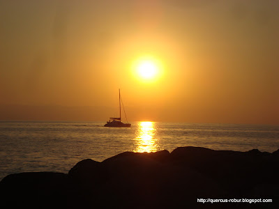Atardecer en Vallarta - Bote