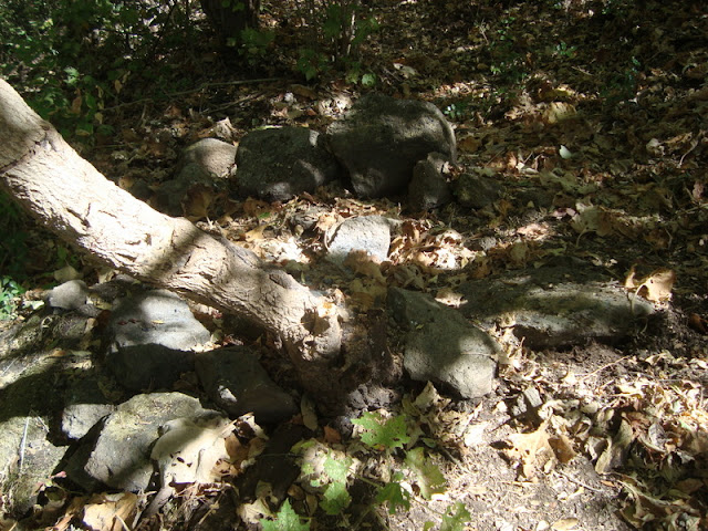 Varios metros arriba de la cascada - restos de fogata