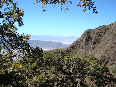 Vista al Sureste desde el Cerro Viejo