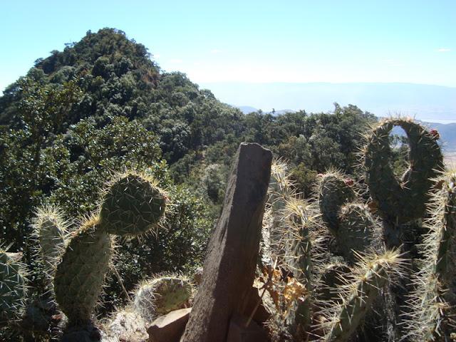 Venía de esa punta, bajé y volví a subir. Solo faltan 250 metros hacia arriba y 600m hacia el frente