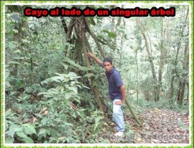 caminata a la cascada del shilcayo