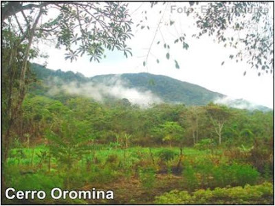 cerro oromina en moyobamba