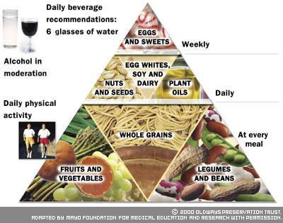 This Pyramid Shows Varies Ways A Vegetarin Should Follow Vegetarians Diet Plan Though It Only Depends On What Kind Of Vegetarian One Chooses To Be