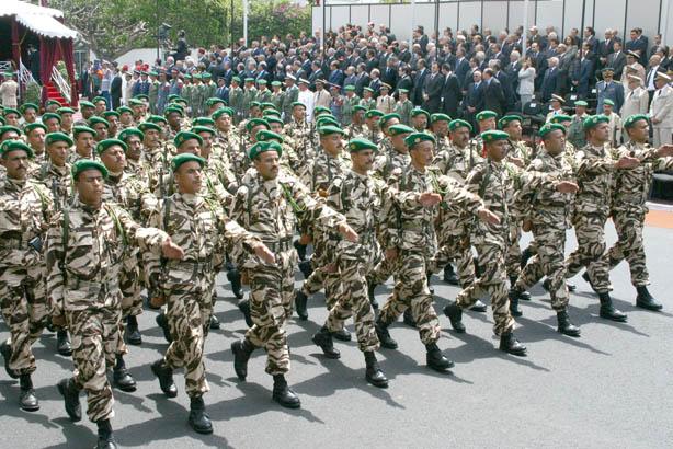 Armée d afrique derrière l armée égyptienne et la 21 e armée
