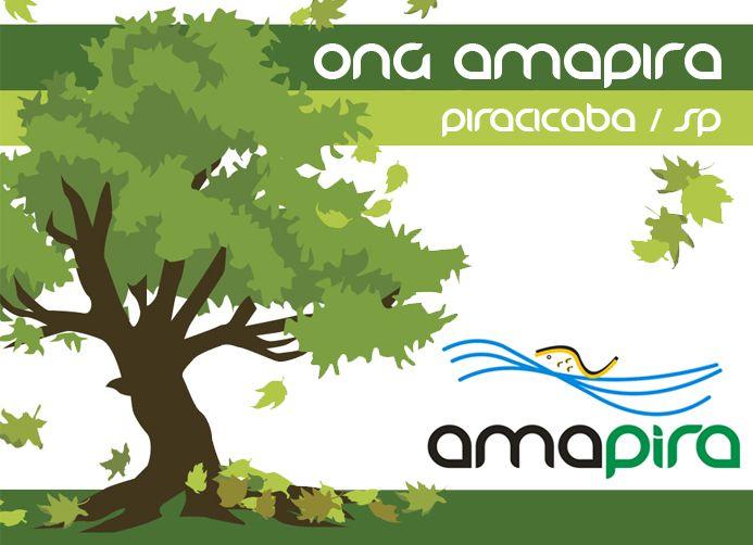 Amapira