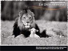 Cordeiro Leão