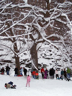 Photo of sledders in Riverside Park in New York City