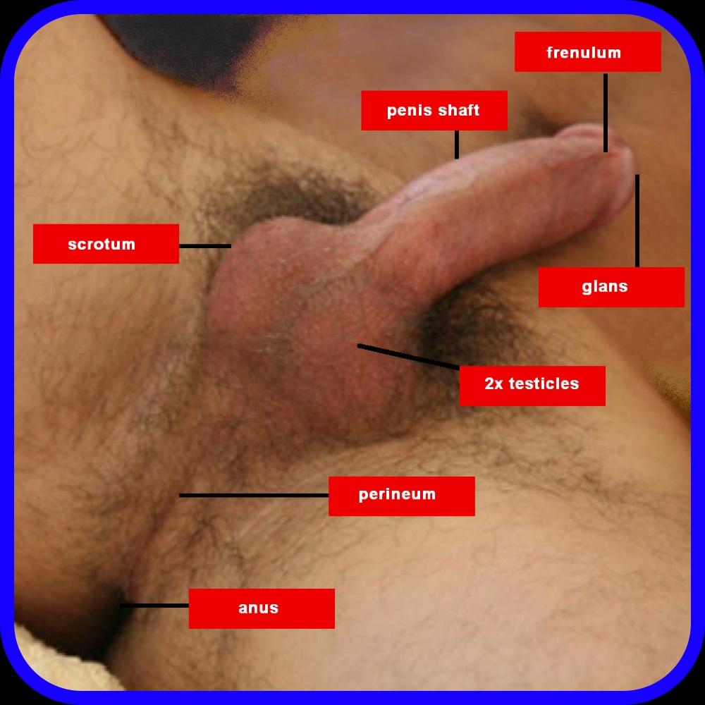lumpy is My sperm why unusually
