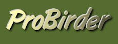 Supported by PROBIRDER