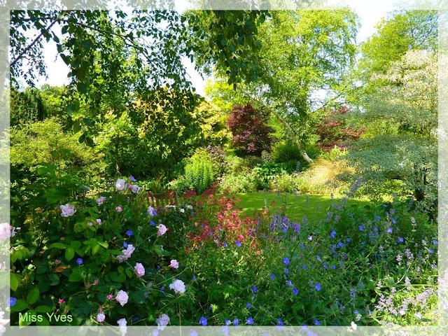 Photograff juillet 2010 for Jardin 5 juillet biskra