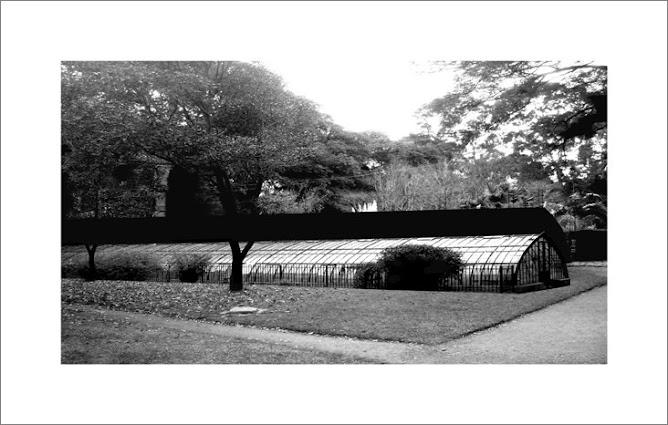 Jardin Botanico 6am