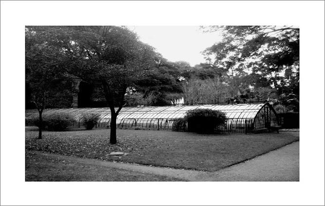 jardin Botanico 5.45am