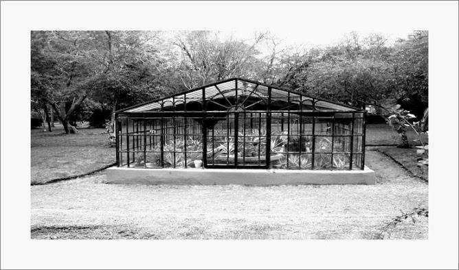 Jardin Botanico I