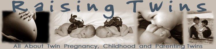 Raising Twins The Blog
