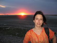 ASISTENTE DE DIRECCION. Karina Iazurlo