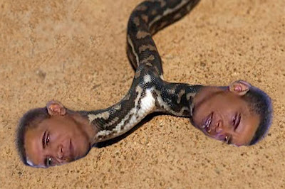 obama snake in the grass