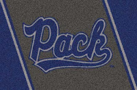 University of Nevada wold pack flag.