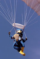 Air Force Falcon mascot parachutes.
