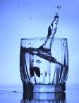 Биологическое значение воды
