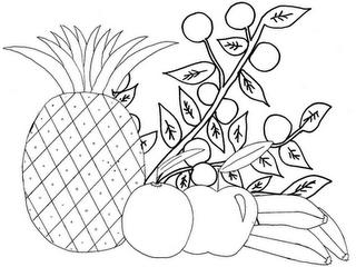 Bilhete De Identidade Da Fruta