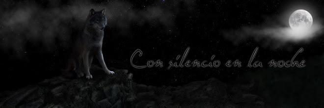 Con silencio en la noche