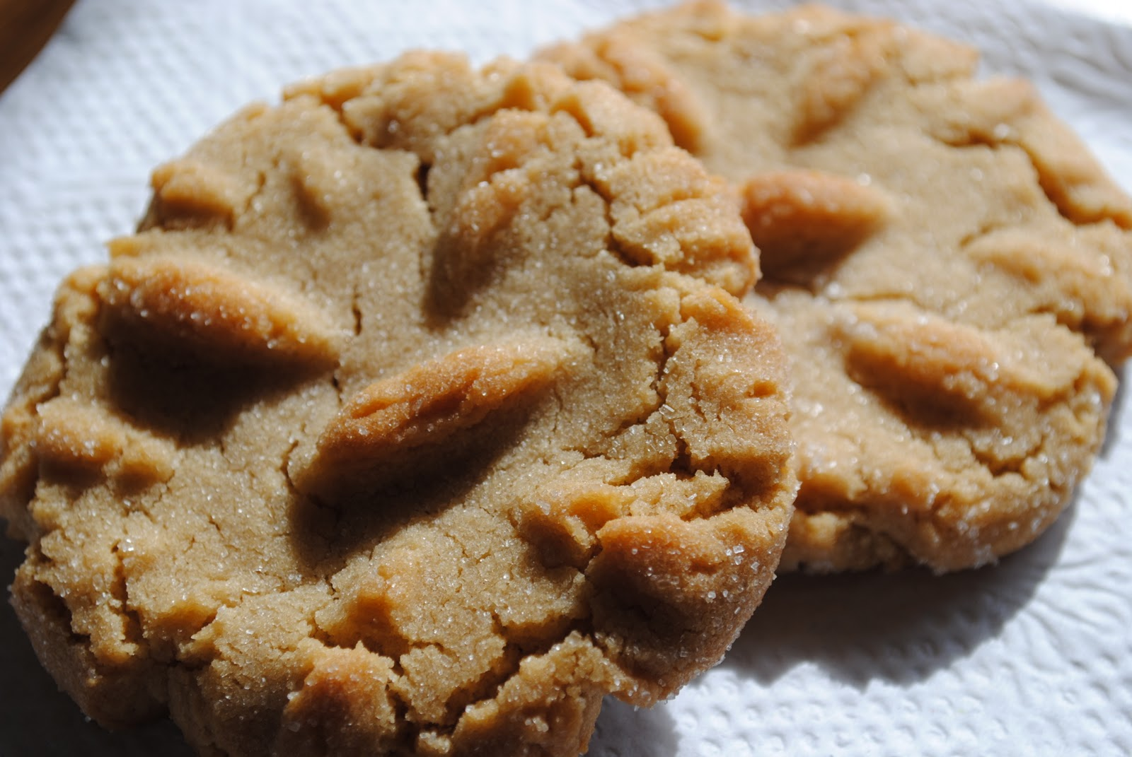 "Dairy Free ""Tried and True"": Chewy Peanut Butter Cookies"