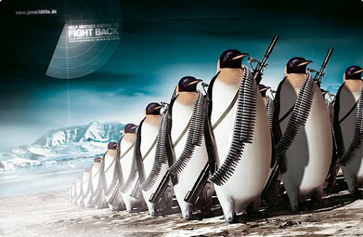 penguins+fighting 27 Alarming Advertisements Dedicated to Earth Day | Part  2