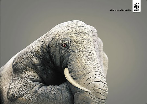 elephant 27 Alarming Advertisements Dedicated to Earth Day | Part  2