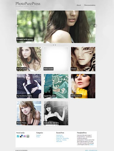 Photo+Pure+Press Fresh Premium Wordpress Themes Designed in 2010