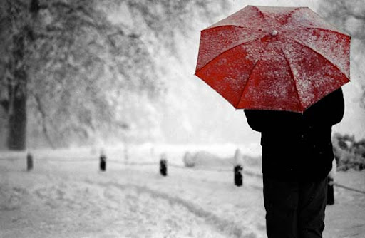 Red umbrella Gorgeous Red Color Inspired Photography