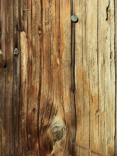 Wood Texture Stock by digital amphetamine 80+ Free High Quality Wooden Texture Packs
