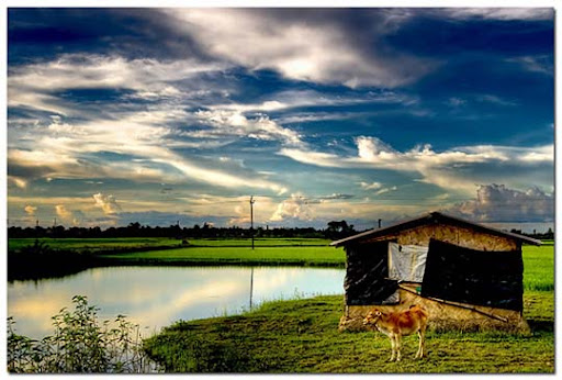 rural+bengal The Incredible India: 90 Spectacular Photos