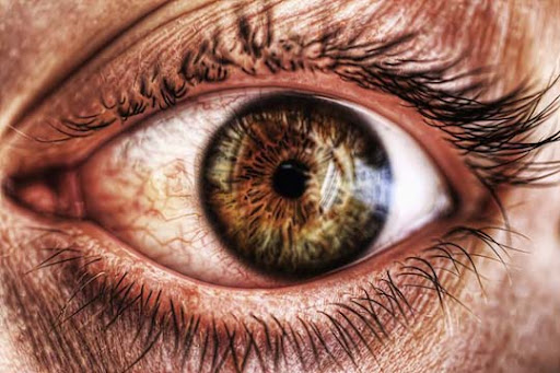 My Eye HDR by ruioliveira photo 30+ Mesmerising Macro Photos of the Human Eye | Photography Inspiration