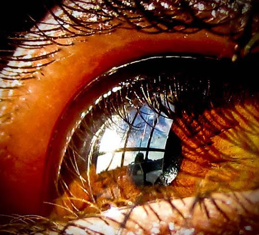 Reflections 30+ Mesmerising Macro Photos of the Human Eye | Photography Inspiration