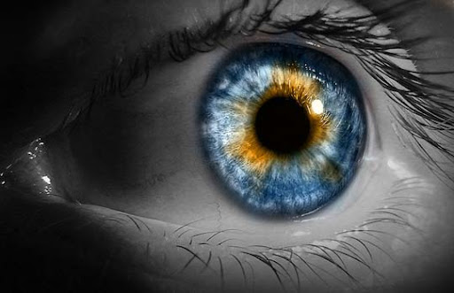 HDR+Eye 30+ Mesmerising Macro Photos of the Human Eye | Photography Inspiration